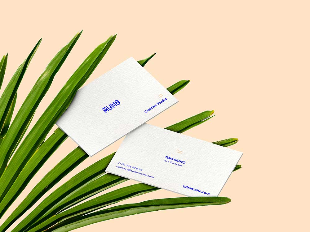 Two Sided Business Cards mockup on palm leaves by TUHOMUHO